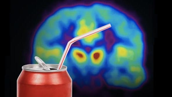 Carbonation Artificially Sweetens Soda and Trick the Brain