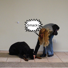 Making the smacking sound and giving my dog a treat