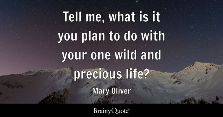Tell Me What Is It You Plan To Do With Your One Wild And Precious