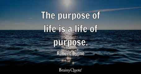 Image result for purpose in life