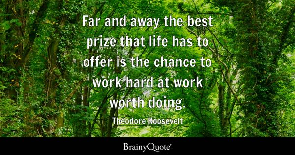 Far and away the best prize that life has to offer is the chance to work hard at work worth doing. - Theodore Roosevelt