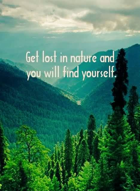 26 Beautiful Nature Quotes About Scenic Beauty Of Nature Brainy Readers