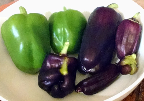 [image: two green bell peppers and five purple bell peppers]