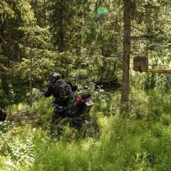 Travel-Sweden-Link-Trail-Brake-Magazine-93