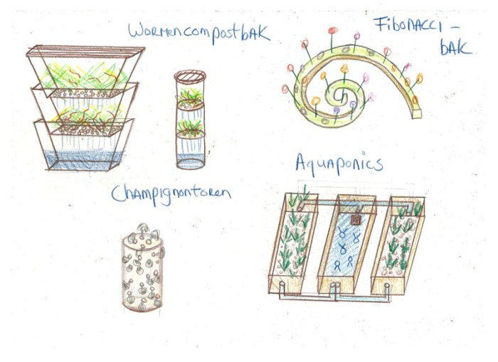 wormen_aquaponics