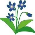 リンドウのような花のイラスト