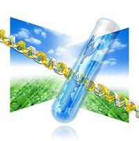 遺伝子のイメージイラスト