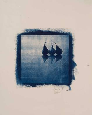 Cyanotype Day 2011 - Branco Ottico