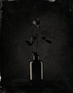 D_Rossi-AMBROTYPE309
