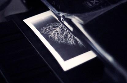la carta cerata - Branco Ottico-03
