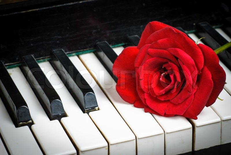 dating for classical musicians Related topics: chamber music   music   opera   musicians   symphony   live  music   piano   classical piano   performing arts   classical music concerts.