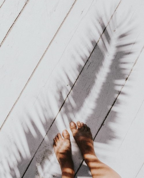 kaboompics_Womans-legs-with-palm-shadow-scaled