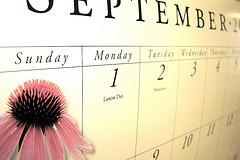 Calendar, by Andreanna Moya Photography