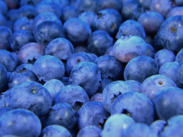blueberries paleo