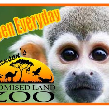 branson promised land zoo, branson zoo schedule, animals at branson zoo
