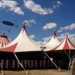Kommunen förbjuder cirkus med vilda djur