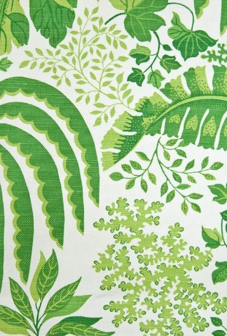 Rainforest in White Linen