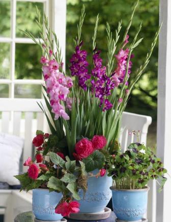 Blumenfreude08