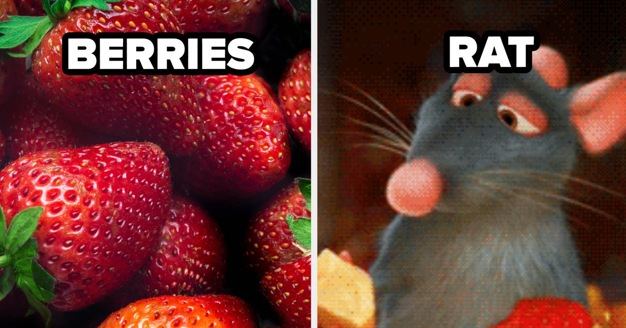 Which-Rodent-Do-You-Resemble-The-Most-Based-On-The-Fruit-That-Youre-Drawn-To.jpg