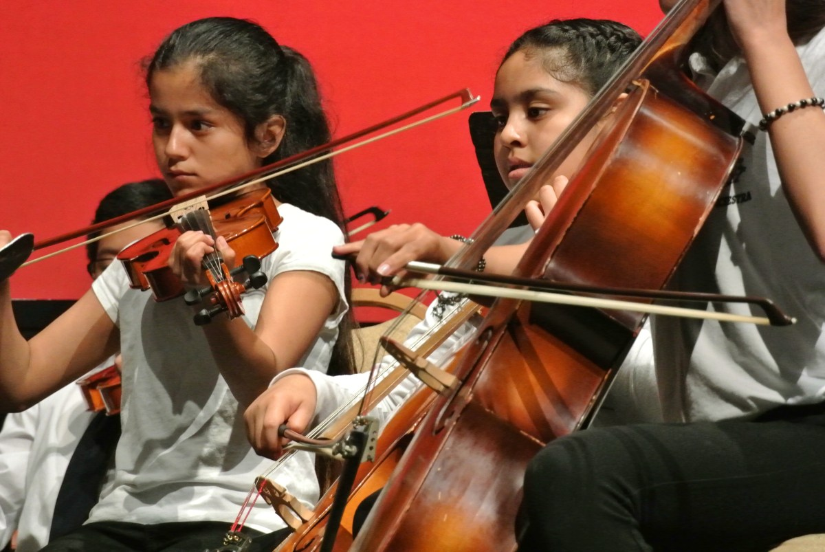 instrument donation
