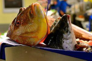 Fischmarkt Palma