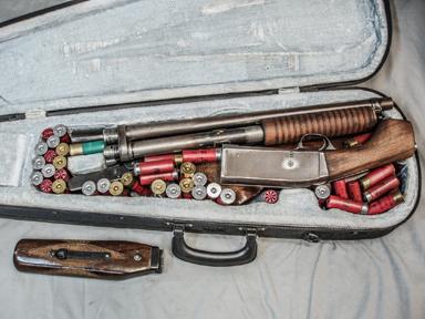 Image result for gun porn