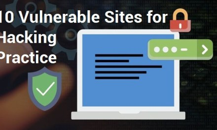 10 Vulnerable Sites for Hacking Practice Legally – Hacking PlayGrounds