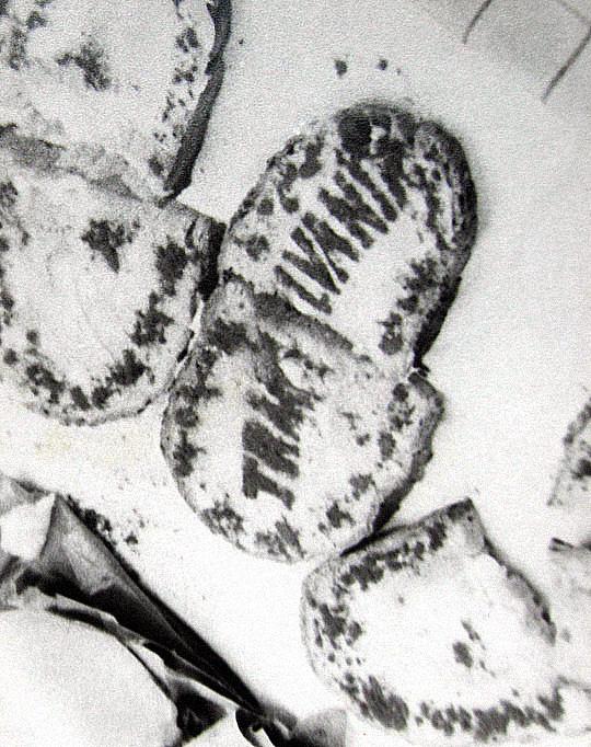 transylvania kenyer2