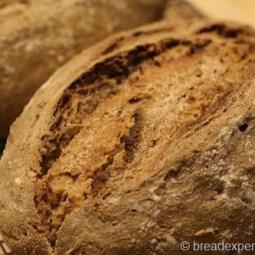 66 Percent Sourdough Rye
