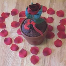 Valentine Breads: HBinFive