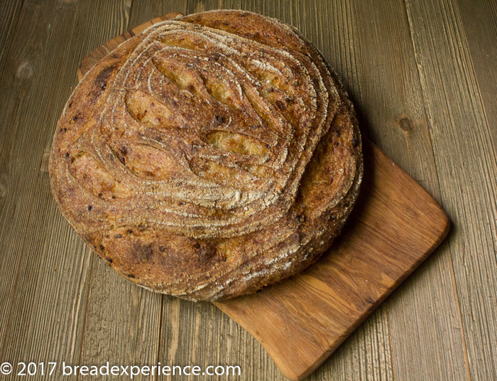 Sourdough Cottage Cheese, Dill, and Onion Spelt Bread
