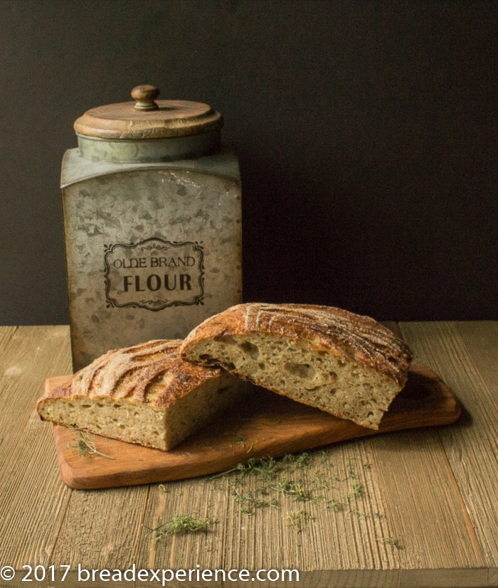 Sourdough Cottage Cheese, Dill, and Onion Spelt Bread #ArtisanBreadBakers #BOM