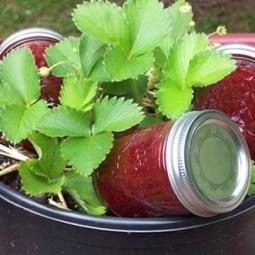Making Jam: Favorite Strawberry Jam