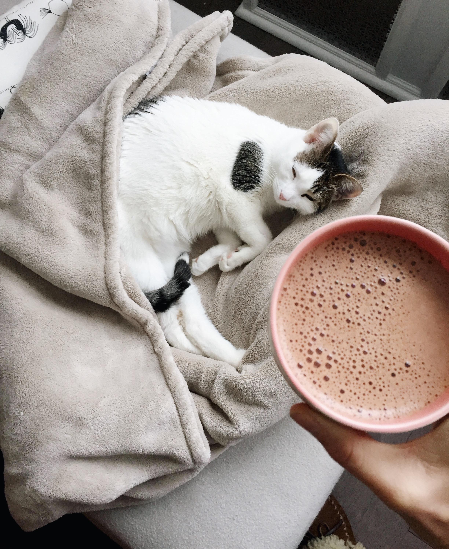 Dandelion Maca Latte Recipe