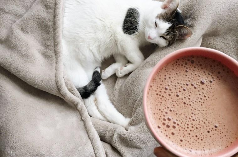 Dandy latte recipe by Elisa Haggarty