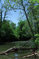 Little Sac RiverCopyright © 2011 Gary Allman, all rights reserved.