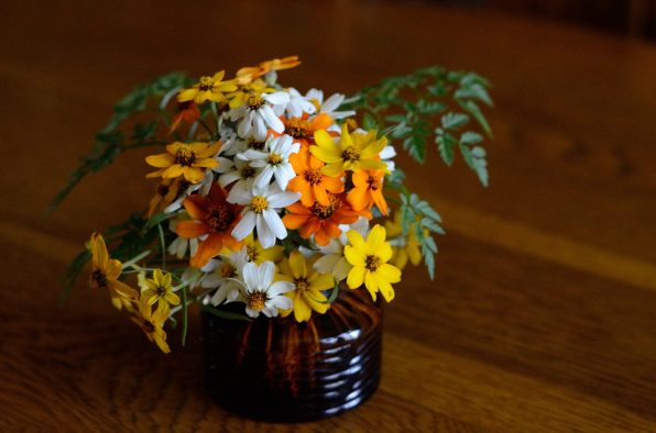 Fall bouquets. Copyright © 2012 Gary Allman, all rights reserved.