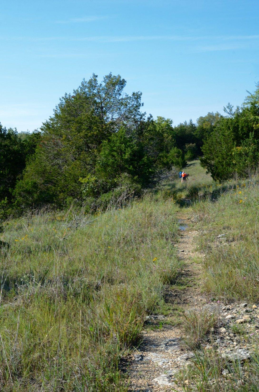 Glades on the Devil's Den West trail - www.Ozarkswalkabout.com
