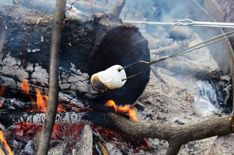 Toasted marsh mellows