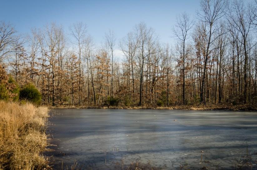 Frozen Stock Pond