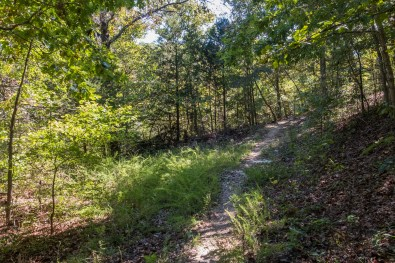 It\'s difficult to tell but to the left is where the trail used to come up a very steep climb. October 1, 2016   www.ozarkswalkabout.com   Copyright © Gary Allman, all rights reserved