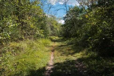 Busiek Orange Trail