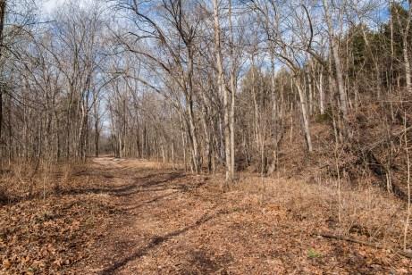 You get to the Orange Trail via the White Trail