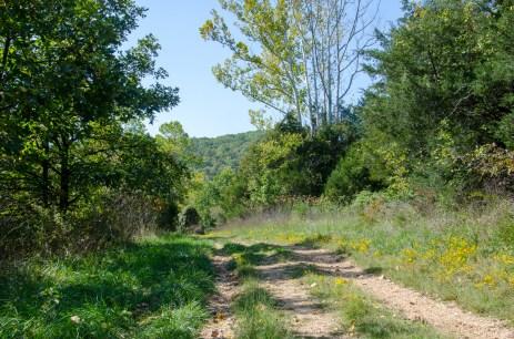 Busiek Yellow Trail heading west
