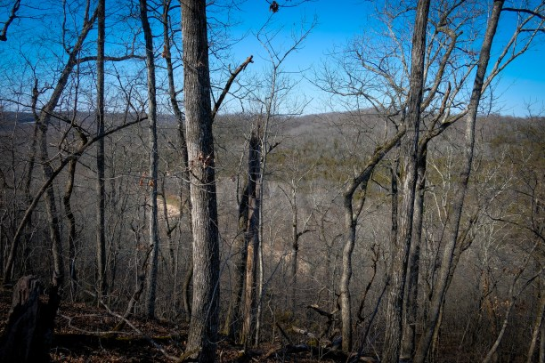 Overlooking Woods Fork - color