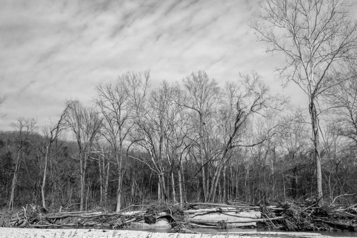 Flood Damage, Woods Fork, Busiek. Copyright © 2018 Gary Allman, all rights reserved.