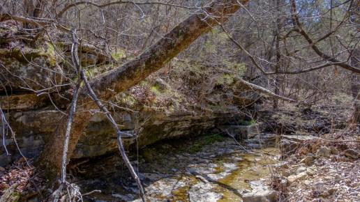 Spring box in Brushy Creek.