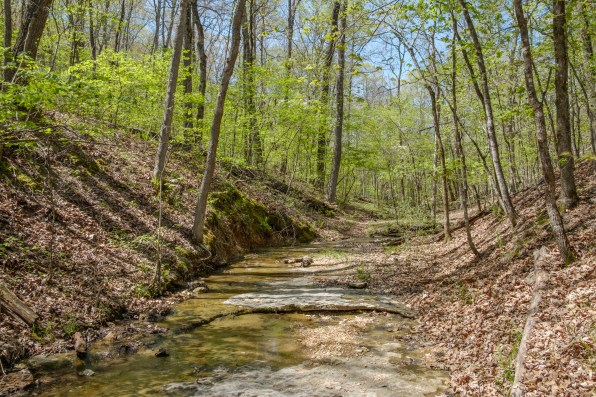 The 'Farm Trail' leaves the creek bed. Copyright © 2018 Gary Allman, all rights reserved.