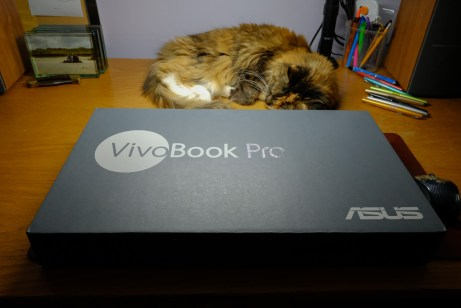 My desk-buddy appears unimpressed by the arrival of my new work laptop.