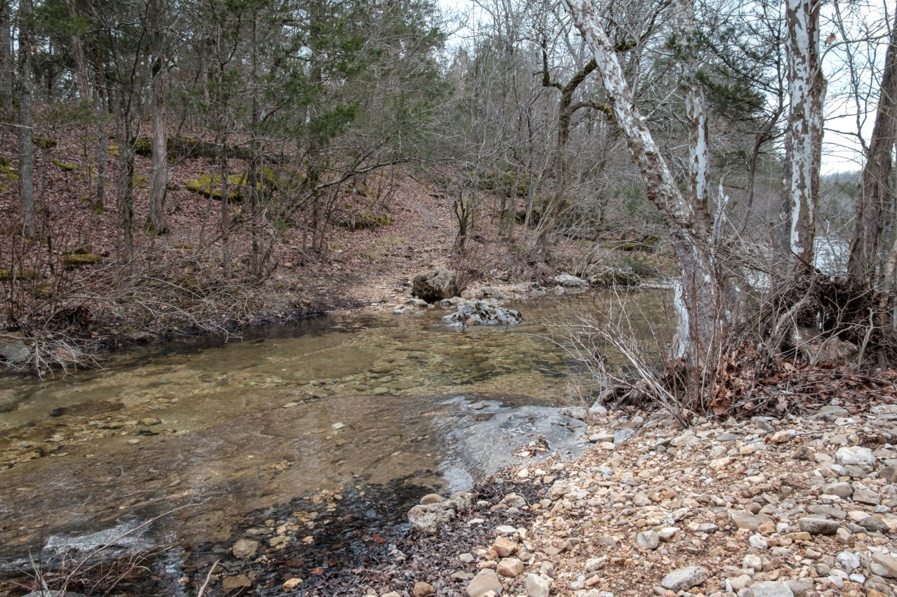 Creek Crossing #2 - Long Creek - My first crossing of Long Creek, headed towards the falls. Copyright © 2019 Gary Allman, all rights reserved.